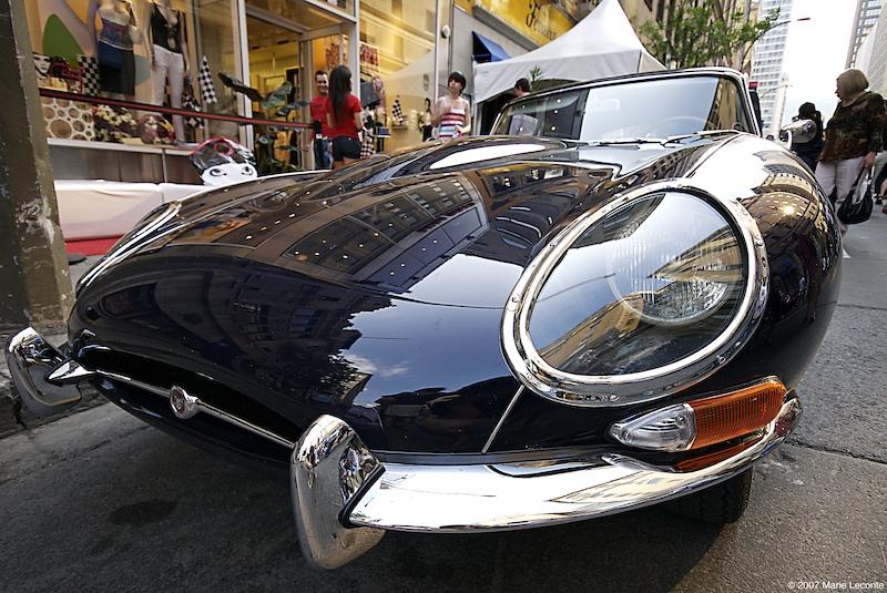 Harold's jaguar