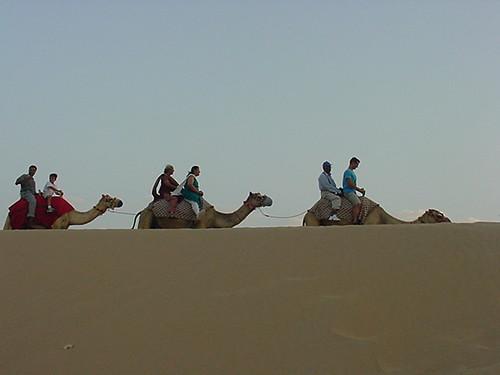 Camel Ride 6