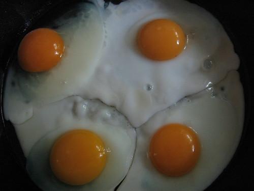Free-Range Eggs