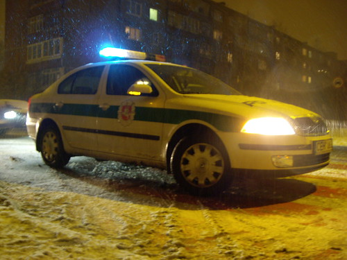 Lithuanian police car