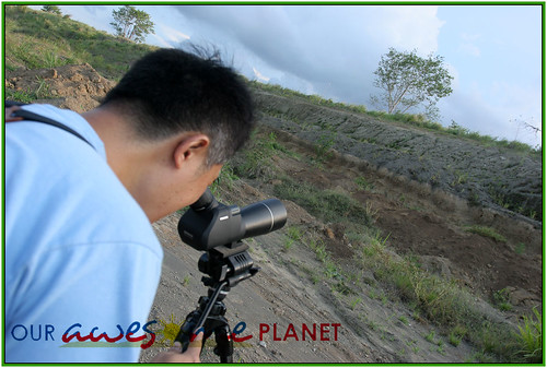 Bird Watching @ Nuvali-8