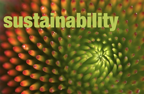subtle technologies, sustainability