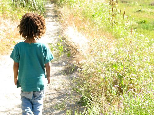 Leafy on a path