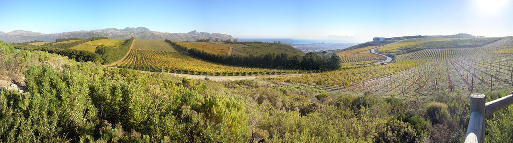 View from Vineyards near Waterkloof Wine Estate
