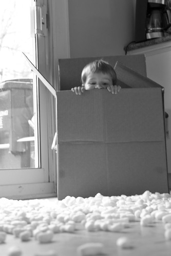 Lucas and the packing peanuts - 6 of 6
