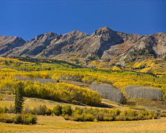 Splendid Ohio Pass Gold (Fort Photo) Tags: autumn mountain mountains fall nature yellow landscape rockies gold nikon colorado rocky co aspen crestedbutte 2010 ohiopass d700