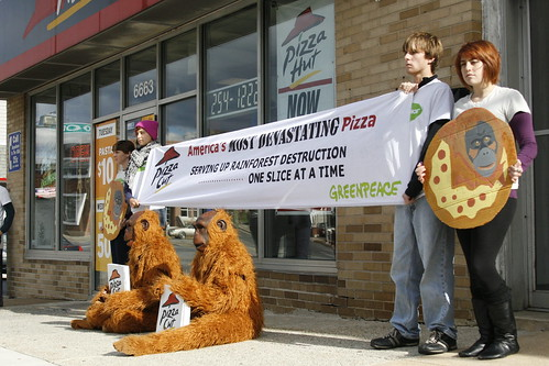 Greenpeace Semester students campaign trip Pizza Cut