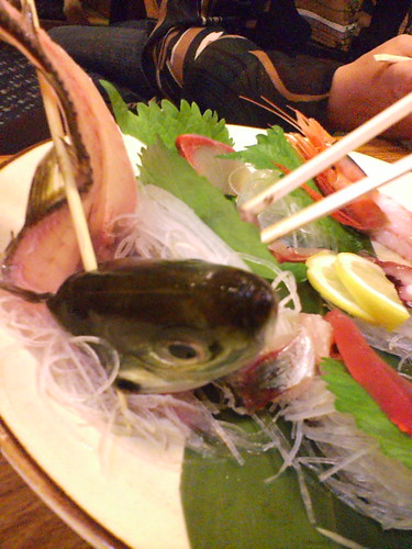 cf70137096bf1 Friday night, Tracey & Tod ordered a sashimi plate at dinner. It arrived at  the table and as they were admiring the choice cuts of fish, the head of  the ...