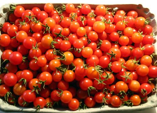 Tomate anano 2