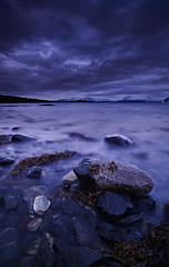 ROCKS AND SEAWEED (~~~johnny~~~) Tags: trees light sea mist snow seascape storm mountains seaweed art water norway vertical