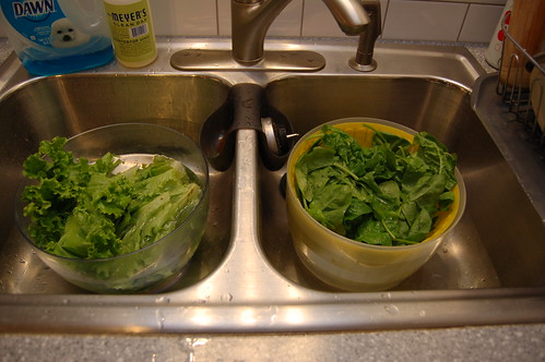 Romaine and Spinach