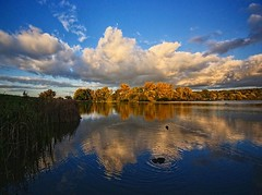 reflections (algo) Tags: uk blue autumn england orange water clouds reflections gold topf50 topv333 bravo searchthebest topv777 ripples algo topf100 100f 50f westonturvillereservoir