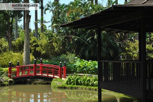 Jardim Botânico / RJ - 27
