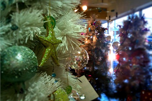 Gallery & shop hopping in Nanaimo. It's Chistmas time in this town.