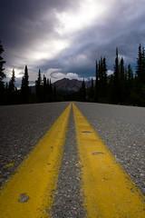 The Road to Denali (code poet) Tags: road trees mountain topf25 yellow topv111 alaska clouds landscape topv555 topv333 pavement stripes topv1111 topv999 stripe 100v10f topv222 topv777 1022mm denalinationalpark vanishigpoint