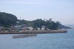 Matsushima 137-b (glandeur_nature) Tags: sea japan matsushima