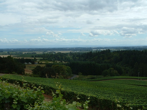 OR Wine Country