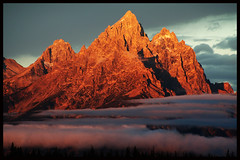 Grand Tetons Grandeur (TPorter2006) Tags: above park pink blue light red sky orange usa cloud sunlight mountains color tree rock fog wow landscape interestingness interesting bravo glow grandmother gorgeous bank grand medal treetops september sharp glacier explore national 300views gorge halloffame grandtetons alpen peaks tetons crevasse platinum trap hof tqm pinnacle 2007 peachy grandeur naturesfinest bigmomma explored wallhanger diamondclassphotographer flickrdiamond photofaceoffwinner photofaceoffplatinum pfogold goldstaraward tporter2006 dec07pfobrackets motmfeb09 herowinner thepinnaclehof tphofweek5 1galleries
