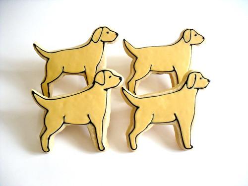 Labrador Retriever Dog Cookie