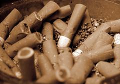 WANT A SMOKE? (Enrique Schneider) Tags: cigarette smoke bad cancer smoking ashes humo cenicero cigarro vicio lung cenizas pulmon adiction adiccion cigarrilos puchos