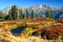 dark blue pond and red blueberry bushes (gregor H) Tags: autumn mountain alps nature landscape austria pond bravo blueberry bushes gettyimages indiansummer redleaves vorarlberg sonnenkopf clearair klostertal worldbest infinestyle waldamarlberg darkbluepond