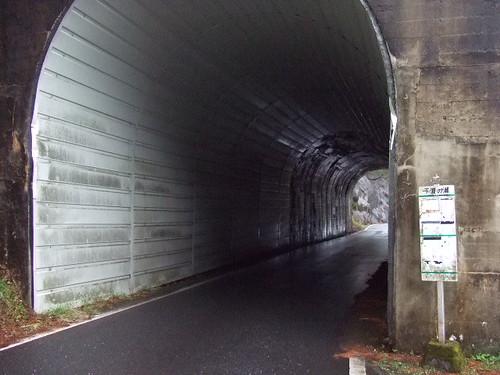 渡之瀬ダム 画像 19