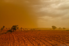 Ploughed Field (Irene Becker) Tags: africa storm sahara geotagged sand desert westafrica nigeria sahel nigerian naija blackafrica arewa 9ja kebbistate canon7d irenebecker sahelpeople нигерија nigerianimages nigeriatravelphotography nigerianphotos imagesofnigeria irenebeckerorg