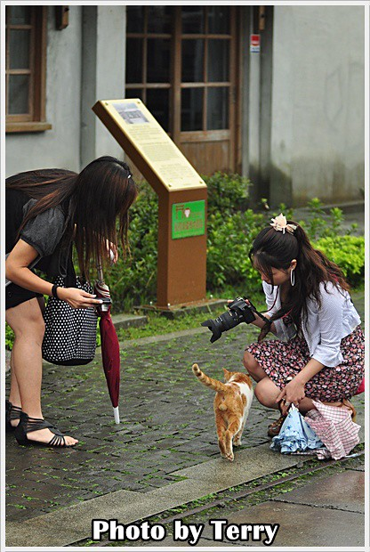 雨中的侯硐散策 (6)