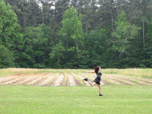 Frolicking in the tobacco fields