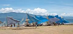 Blue sails in the breeze (Sven Rudolf Jan) Tags: blue sea canoe sail papuanewguinea outrigger alotau milnebay traditionalcanoe janhasselberg canoekundufestival