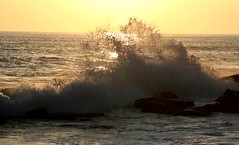 Backlit Wave - by claire.5000