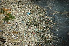 fake plastic beach