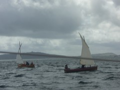 dipping lug race (sulaire) Tags: sailing tiree hebrides eigg