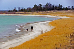 Beach Walkers (smiles7) Tags: november dog man beach buzz michigan lakemichigan charlevoix topaz