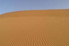 Sahara (Nick_Leonard) Tags: africa travel sahara yellow sand desert northafrica morocco ripples 2007