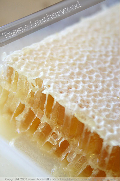 Tasmanian Leatherwood Honeycomb