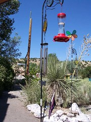 100_1727 (anamana) Tags: madrid bird feeder pinwheel
