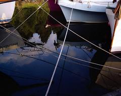 criss-crossed (Mike Ambach) Tags: mamiya7ii pier dock princerupert mamiya rangefinder film mediumformat boats pacific ropes reflection composition blue mundanedetail kindofartsy v700 epsonv700 scan utatafeature utata homepage analog