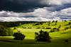 (reiner albrecht) Tags: light sky clouds landscape licht himmel wolken landschaft updatecollection ucreleased