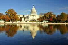 Rorschach Capitol (RobStelling) Tags: usa reflection washingtondc washington reflexo estadosunidos