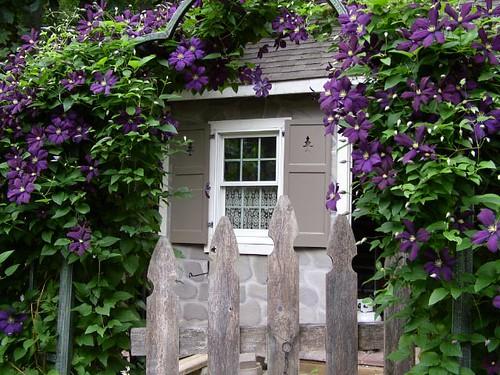 Garden Cottage in bloom!
