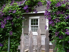 Garden Cottage in bloom! (Oh So Very...) Tags: stone garden cottage clematis shutters