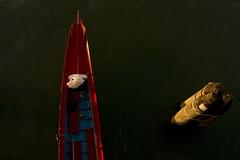 ! - (Nicola Zuliani) Tags: verde barca mare nicola rosso venezia celestia bacini sopra bricole nizu zuliani nicolazuliani spuntare nizuit wwwnizuit