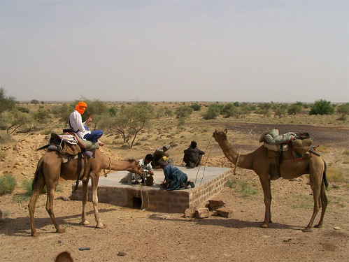 On remplit l'eau pour les chameaux