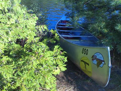 algonquin canoe