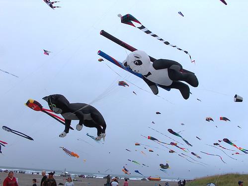 7-Animal Kites