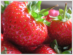 A strawberry in view (Dawniex) Tags: red macro dawn strawberries olympus thephotooftheweek strawberriespool exploreyay