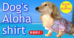 aloha-tsukune