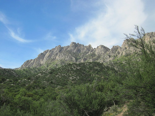 Majestic Organ Mountains