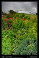 Garden Colour (Sean Bolton (no longer active)) Tags: wales carmarthenshire cymru wfc sirgâr nationalbotanicgardens seanbolton welshflickrcymru ffotocymrucouk ffotocymru